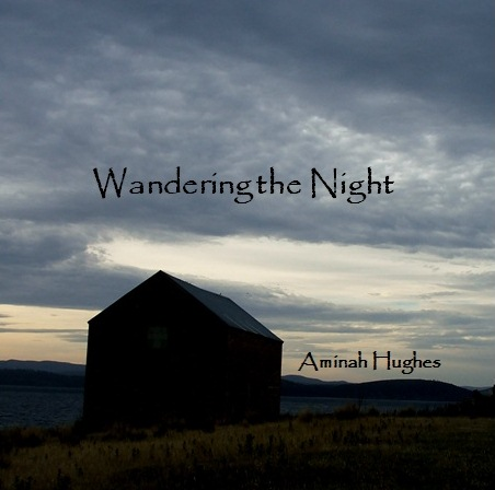 wandering the night